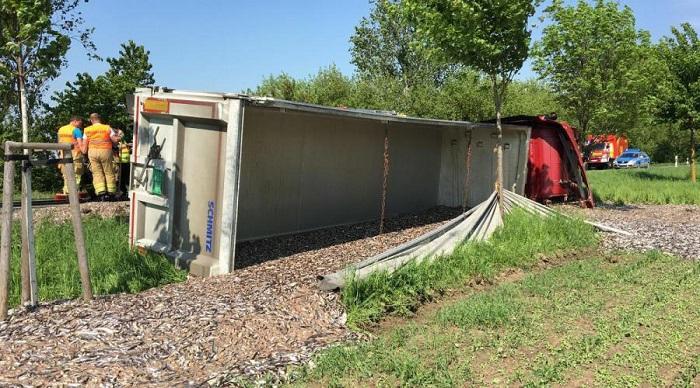 Un camion cu 20 de tone de peşte s-a răsturnat pe marginea drumului. Şoferul a încercat să evite un accident