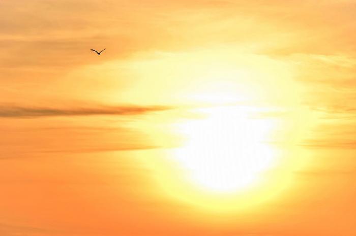 ANM a publicat prognoza meteo pentru vara 2018! Cum va fi vremea în lunile iunie, iulie şi august