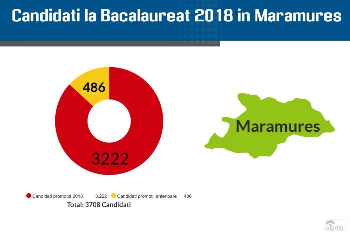 Rezultate Bac 2018 Maramureș pe Edu.ro. Notele pentru elevi