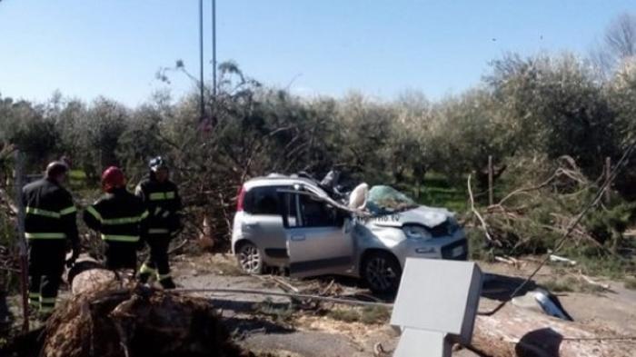 Român la volanul unui Fiat Panda moare strivit la Tivoli de un arbore uriaş, prăbuşit din senin pe şosea
