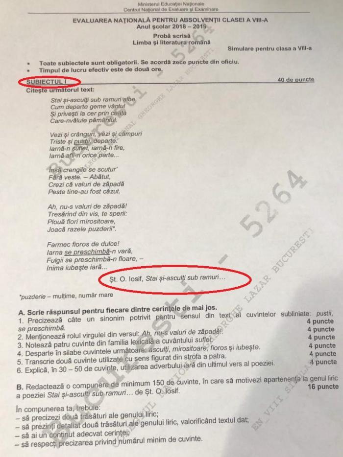 Ministerul Educaţiei regretă greşeala din subiectele la română de la simularea Evaluării Naţionale