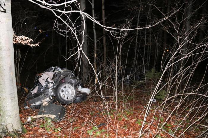 Imagini de coşmar în Germania, un adolescent de 16 ani a murit într-un Audi rupt în două, într-o pădure