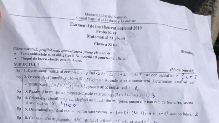 Fişa cu subiecte de la proba de matematică de la Simularea examenului de Bacalaureat