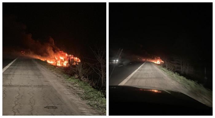 Maşina electrică de 120.000 de euro a ars complet pe autostrada A2
