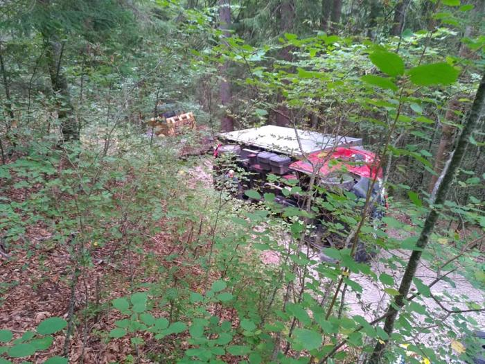 Camion cu un milion de km la bord, răsturnat în pădure, în Franţa