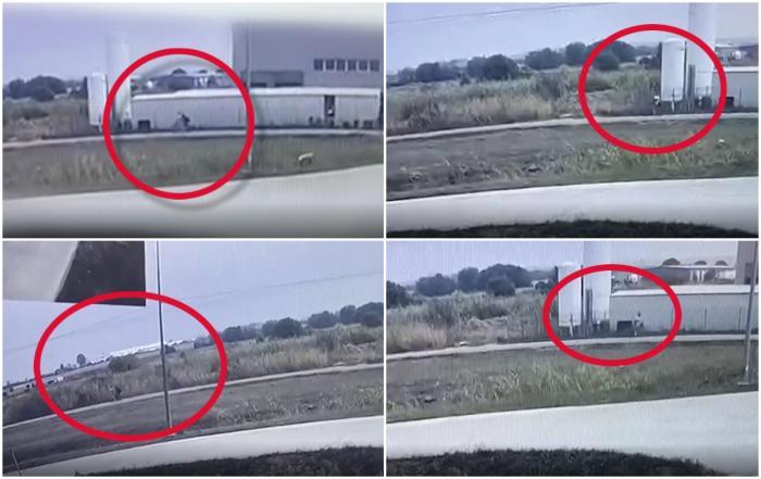 Ultimele clipe din viaţa tinerei din Cluj, ucisă de un recidivist la Oradea, surprinse de o cameră de supraveghere. Câteva minute mai târziu femeia era omorâtă cu bestialitate
