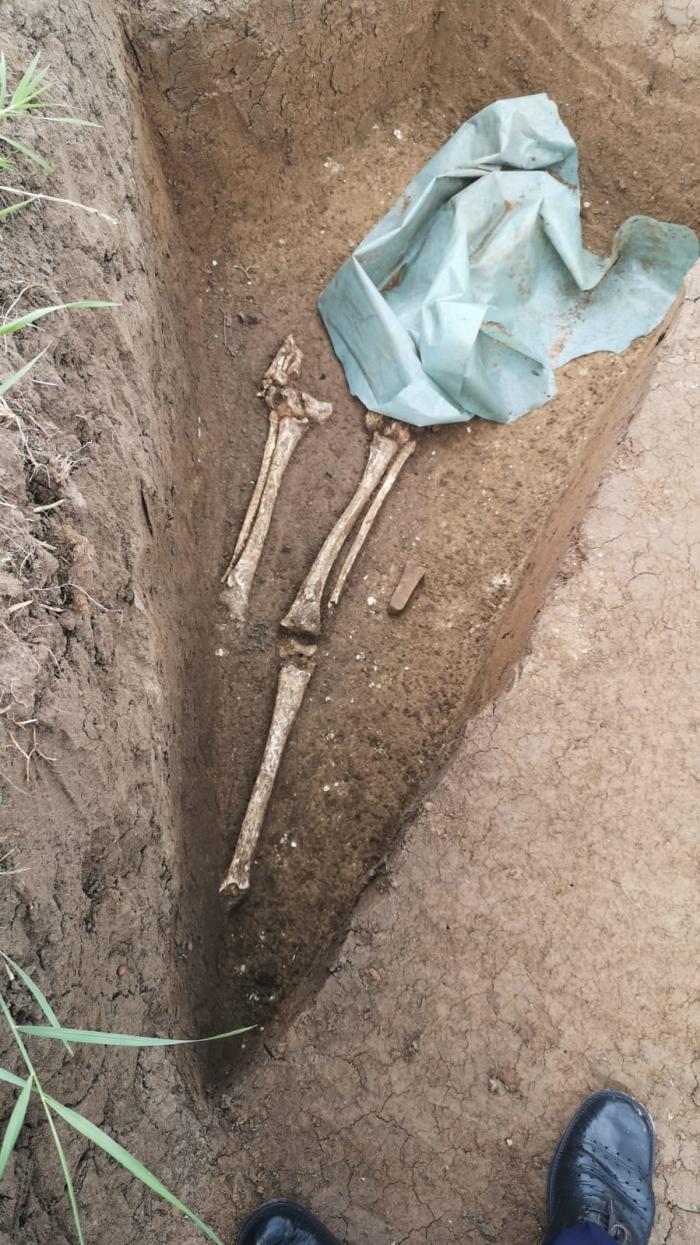gropi cu oseminte descoperite pe DE
