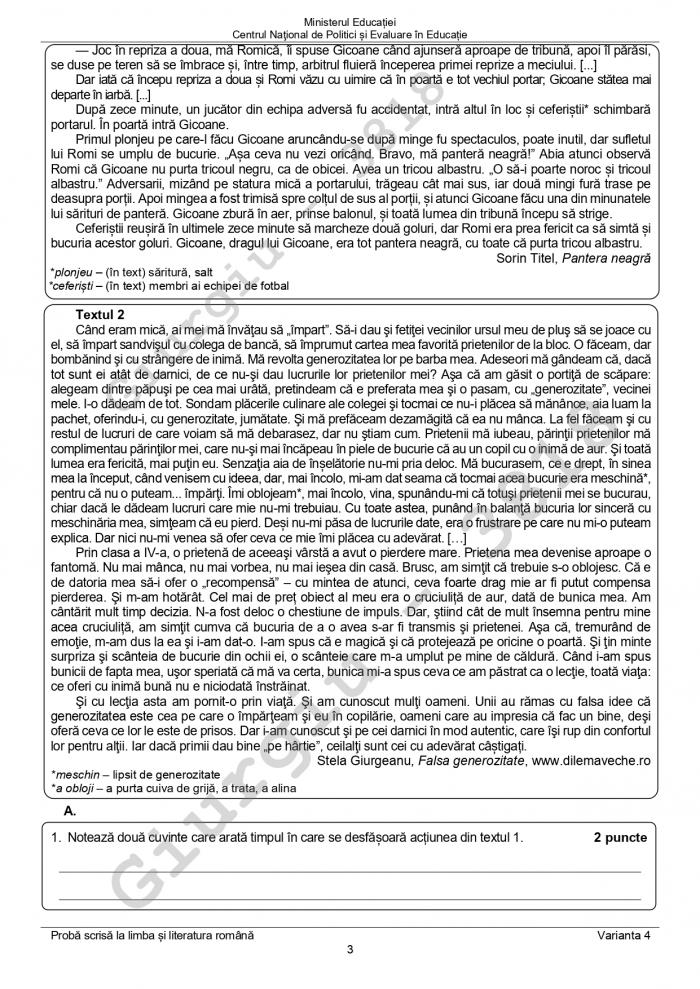 Subiectele la Limba şi literatura română, la Evaluarea naţională 2021