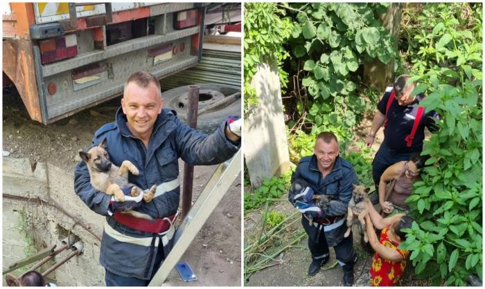 Trei căței, blocați sub un podeț lung de 10m, au fost salvați de Vali și Cristi, doi pompieri din Timiș