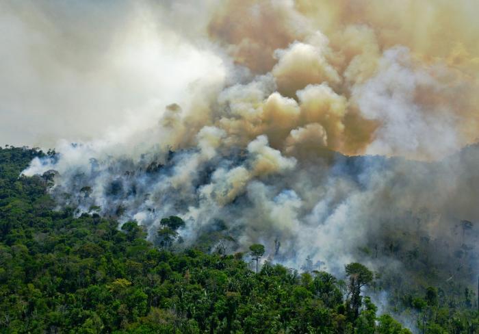 """""""Cea mai mare știre în lume la ora actuală"""". Omenirea a transformat Amazonul din aspirator într-o sursă de dioxid de carbon"""