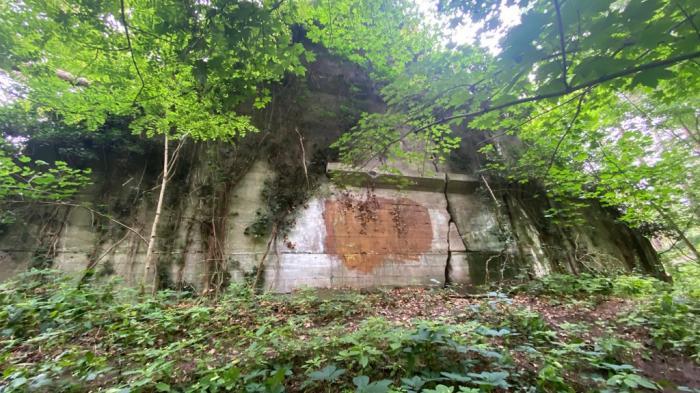 Bianca, o tânără mamă dată dispărută de familie, găsită moartă în pădure, într-un buncăr german din Al Doilea Război Mondial - VIDEO