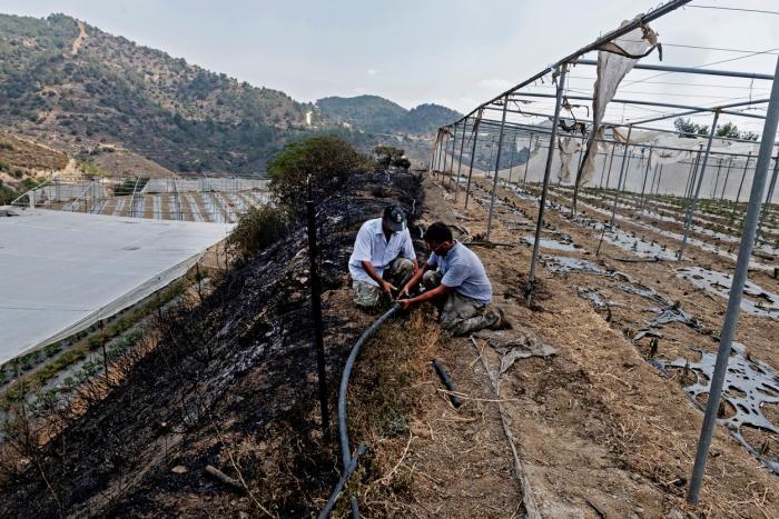 Imaginile dezastrului din Cipru. Incendiile devastatoare au făcut prăpăd, patru persoane şi-au pierdut viaţa. Un bărbat de 67 de ani ar fi vinovat