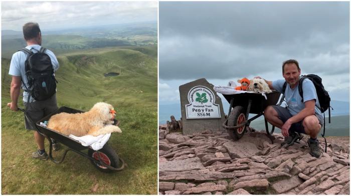 Un britanic şi-a dus câinele aflat pe moarte pe muntele său preferat, într-o roabă, pentru o ultimă plimbare