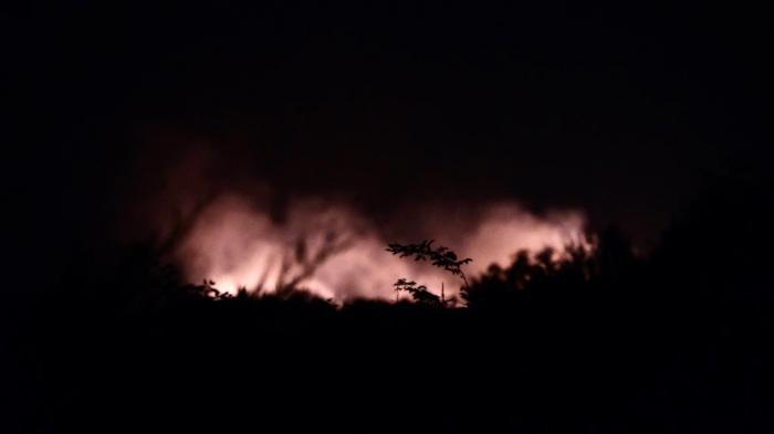 Un incendiu de vegetație a izbucnit la Corbeanca, lângă București