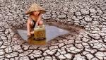Secetă cruntă în Vietnam. Imagini sfâşietoare cu un copil ce strânge ultimele picături de apă dintr-un lac secat pentru a le duce familiei   GALERIE FOTO