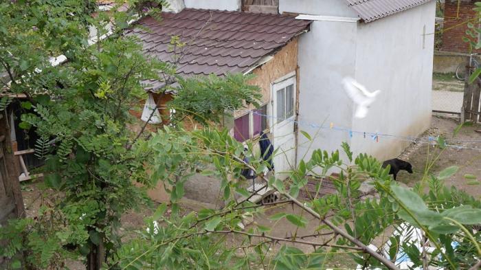 Băiețel de 10 ani, ademenit și batjocorit de un vecin în șopronul casei. Oroare într-un sat din Alba
