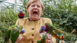 Angela Merkel, asaltată de papagali într-un parc din Germania. Reacția cancelarului după ce păsările s-au așezat pe ea