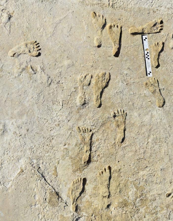 Urme de paşi, considerate cele mai vechi amprente lăsate de om, descoperite în America de Nord