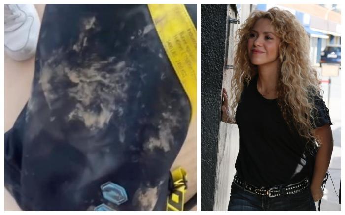"""Shakira, atacată de doi porci mistreți într-un parc din Barcelona. """"Mi-au smuls geanta cu tot cu telefon. Au distrus tot!"""""""