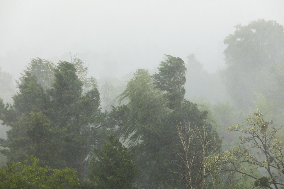 Ploi torențiale, grindină și vijelii în toată țara, până vineri seară. Cod roșu de inundații pe râuri din Satu Mare, în următoarele ore