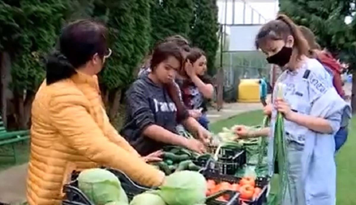 Elevii unui liceu din Maramureş cultivă legume, pe care le scot apoi la vânzare