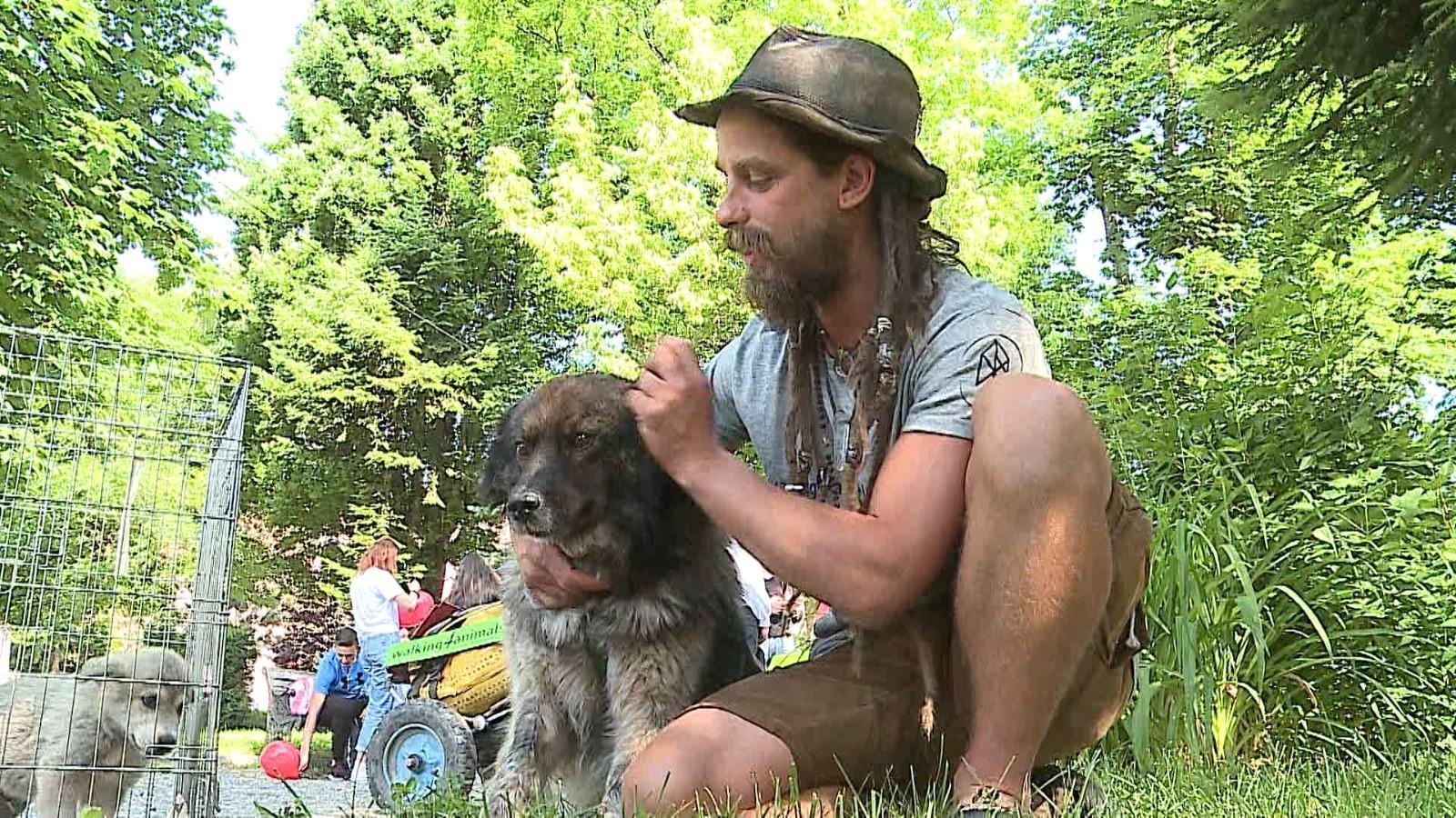 Un austriac a mers 1.300 de kilometri pe jos ca să strângă bani pentru adăpostul de câini din Reghin