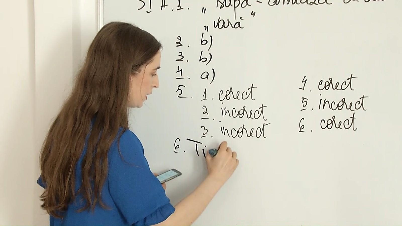 Evaluare Națională 2021. Rezolvarea subiectelor la Limba română, de către profesoara Cristina Tunegaru. VIDEO