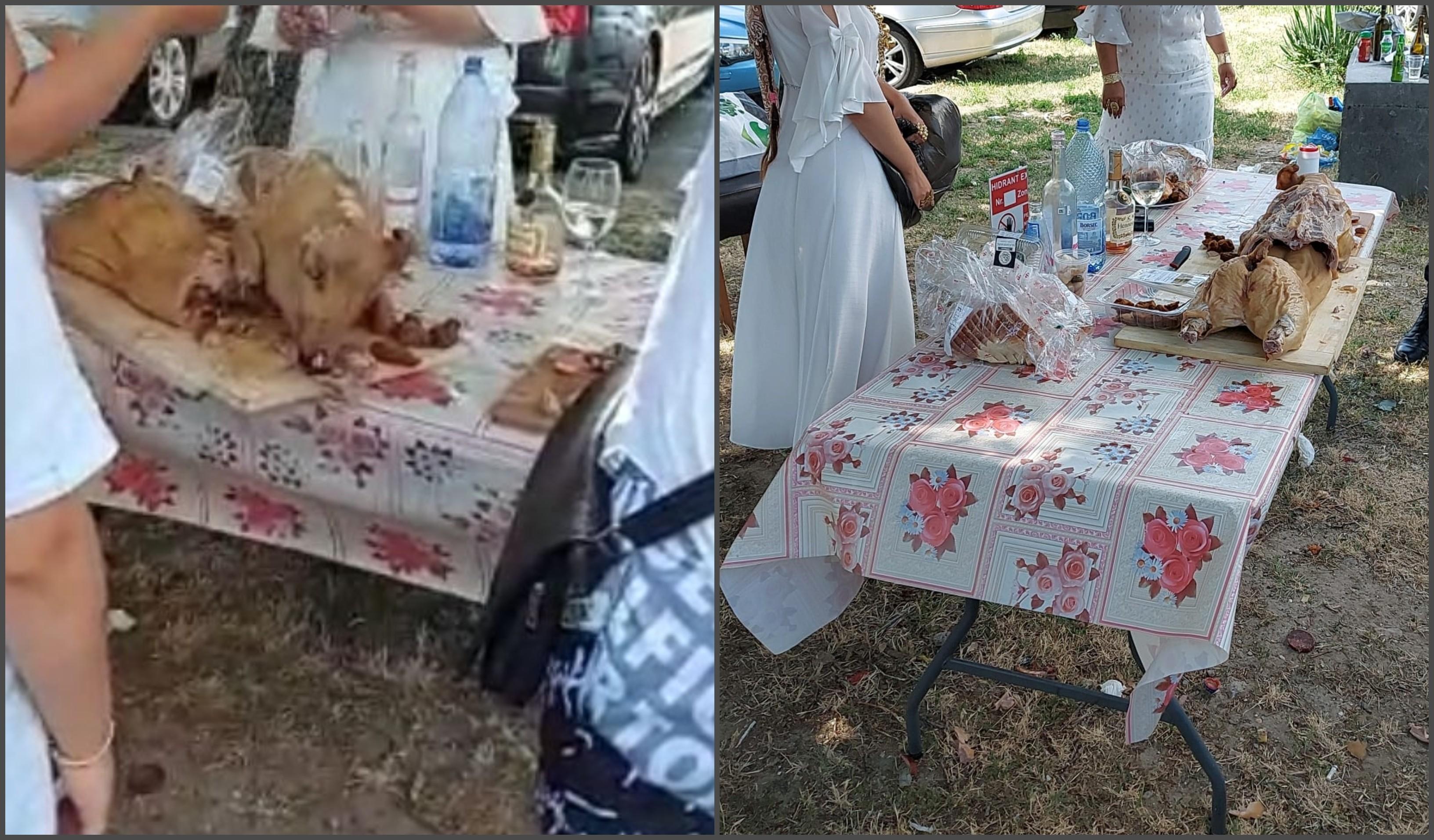 Familii de romi, petrecere cu purcei de lapte la proţap şi băutură, în faţa unui hotel din Mamaia - VIDEO