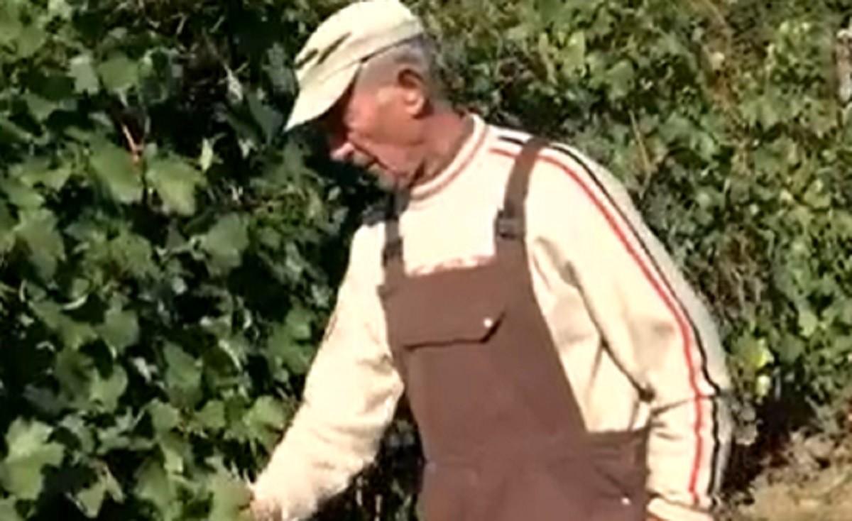 ''Om trecut prin multe, îmi vine să plâng.'' Odinioară raiul viticultorilor, oamenii dintr-o localitate din Gorj au rămas doar cu amintirile