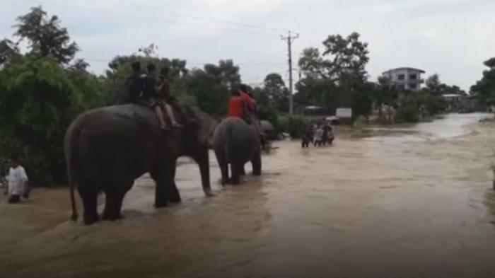 Inundații CATASTROFALE în Nepal! Sute de turiști aflați într-un parc safari au fost salvați de ELEFANȚI. Imagini dramatice