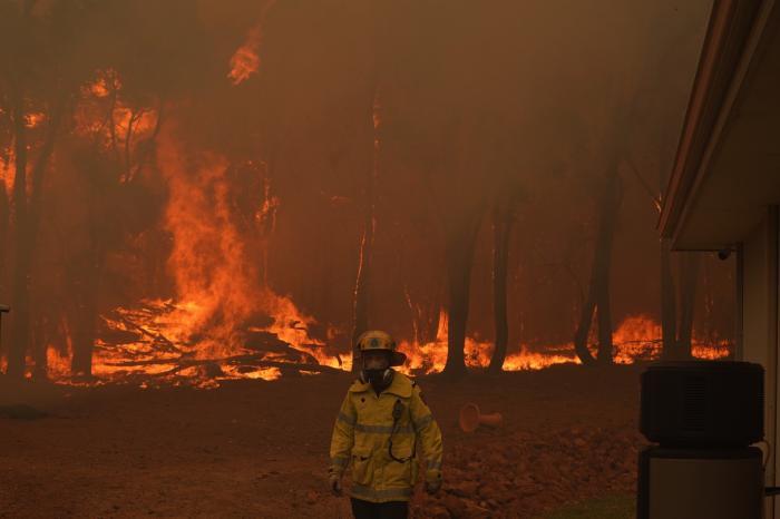 incendiu de vegetație
