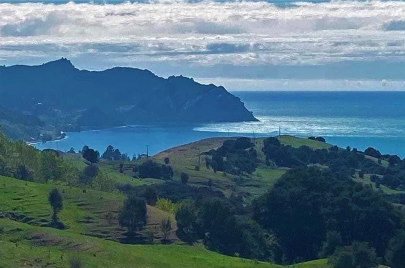 Tsunami Noua Zeelandă