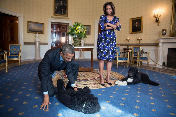 Bo și soții Obama