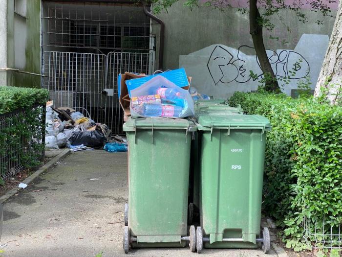 Sectorul 1, sufocat de gunoaie. Clotilde Armand cere stare de alertă şi lansează noi acuze la adresa Romprest - Galerie foto