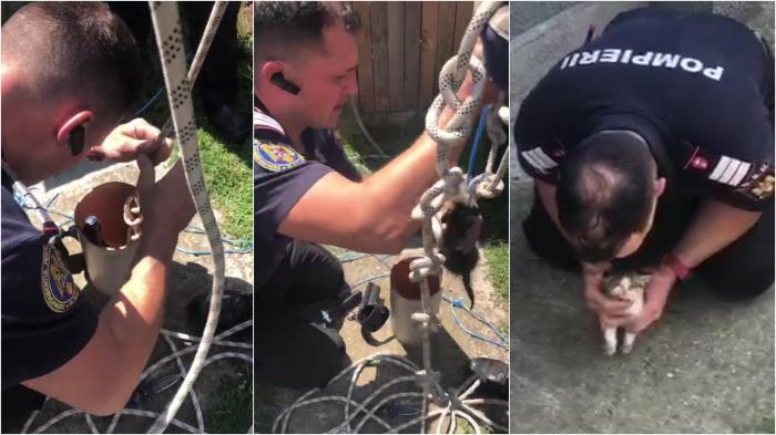 O altfel de misiune: Pompierii din Arad au salvat un pui de pisică, după ce a căzut într-un tub - VIDEO