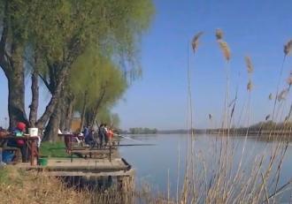 Pescuitul pe baltă, relaxare pentru pasionați. O zi de pescuit pe o baltă privată costă în jur de 70 de lei